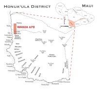 Honualoa Wailea 670 map